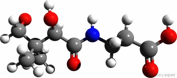 Молекула пантотеновой кислоты
