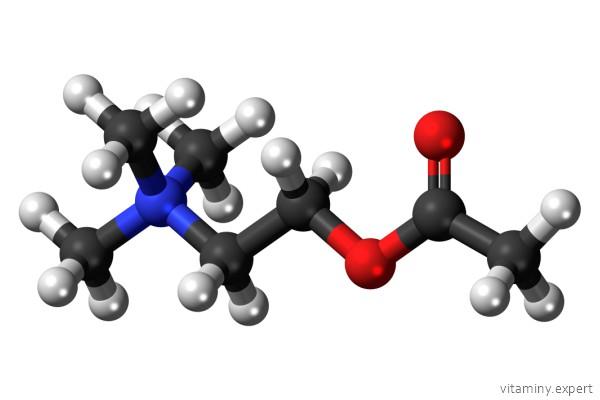 Молекула холина