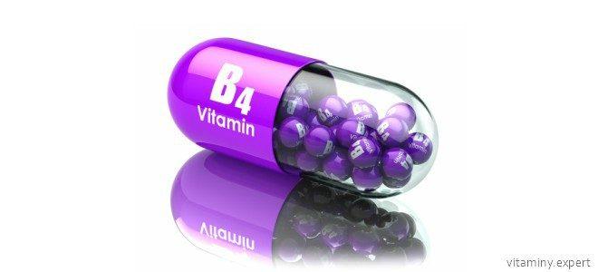 Миниатюра к статье Холин: роль витамин B4 в организме человека