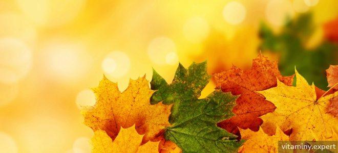 Миниатюра к статье В каких витаминах мы нуждаемся осенью