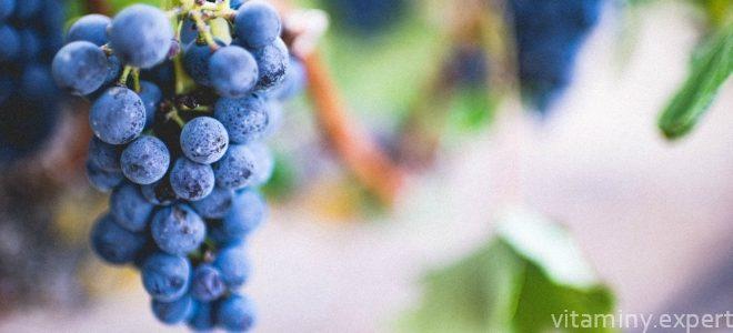 Миниатюра к статье Много ли витаминов в винограде?
