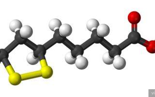 Миниатюра к статье Липоевая кислота: польза элемента для организма