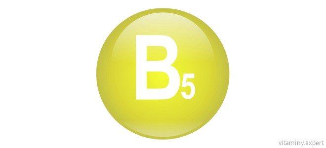 Миниатюра к статье Какую роль играет пантотеновая кислота в организме и где содержится этот витамин
