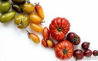 Миниатюра к статье Что содержится в помидорах: витаминно-минеральный состав