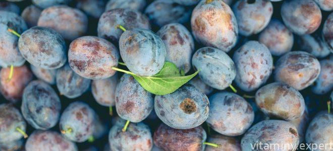 Миниатюра к статье Какие полезные вещества и витамины содержатся в сливе