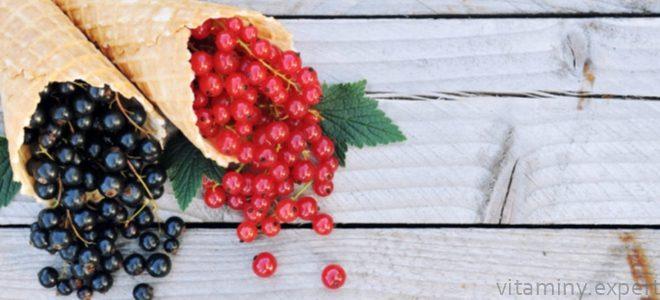 Миниатюра к статье Какие витамины содержатся в черной и красной смородине?