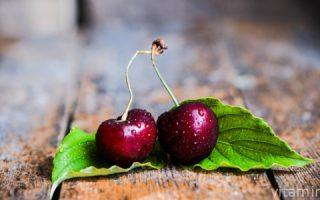Миниатюра к статье Вишня и ее витаминно-минеральный состав