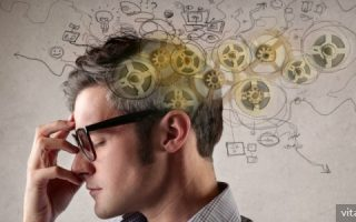 Миниатюра к статье Витамины, полезные для ума и памяти